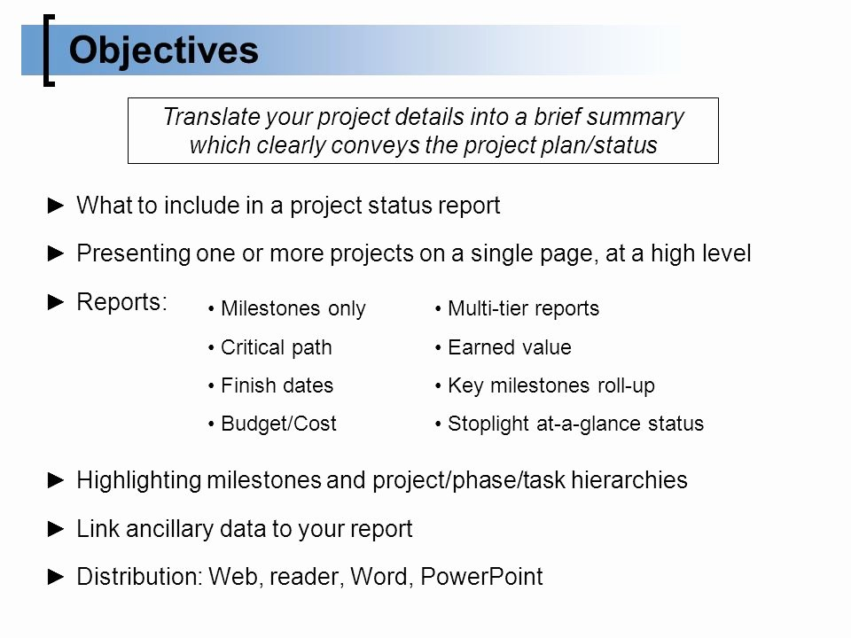 One Page Project Summary Lovely Successfully Presenting Your Microsoft Project Reports