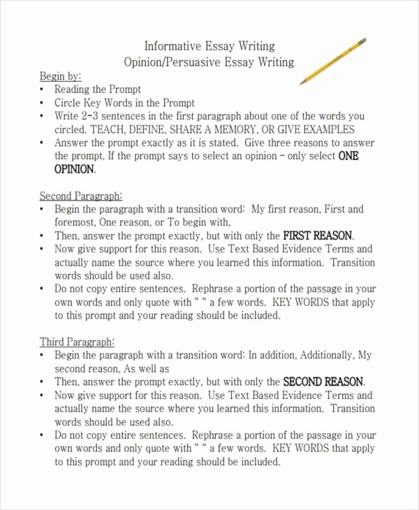 Opinion Editorial Essay Example New 21 Essay Writing Examples