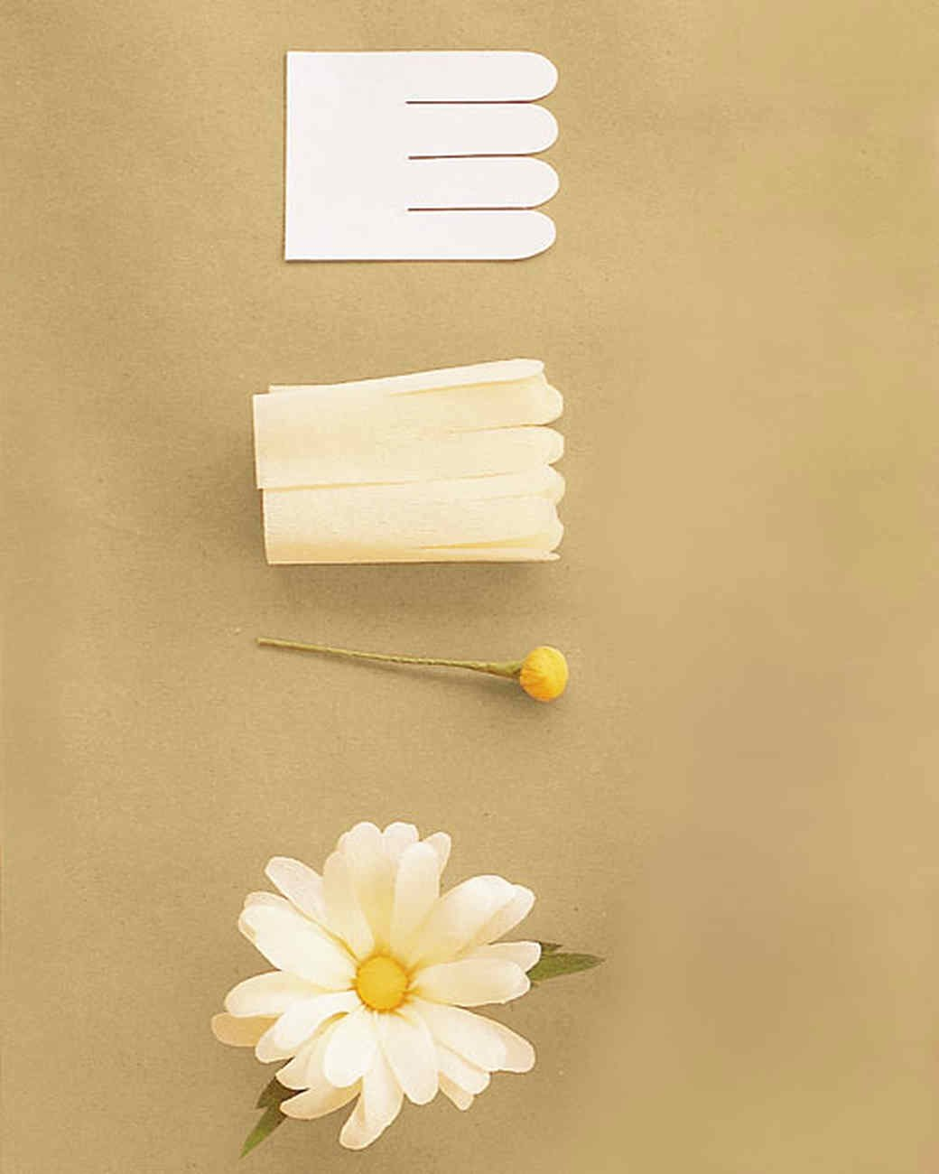 Paper Flower Template Martha Stewart Best Of How to Make Crepe Paper Flowers