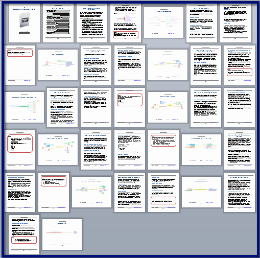 Participant Guide Template Elegant Mastering Mind Maps for Business Customizable Training