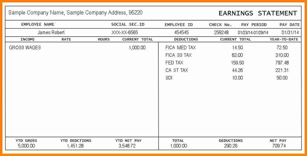 Pay Stub Template Word Unique 12 Paystub Example