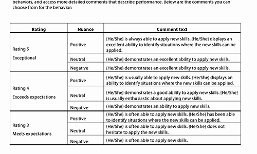 Performance Summary Example Awesome Sample Performance Review Ments & Appraisal Feedback