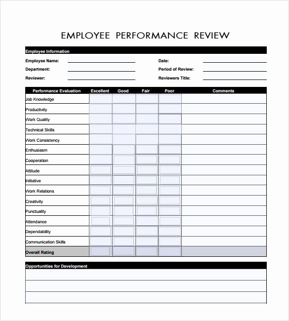 Performance Summary Example Beautiful Sample Performance Review 6 Documents In Pdf Word