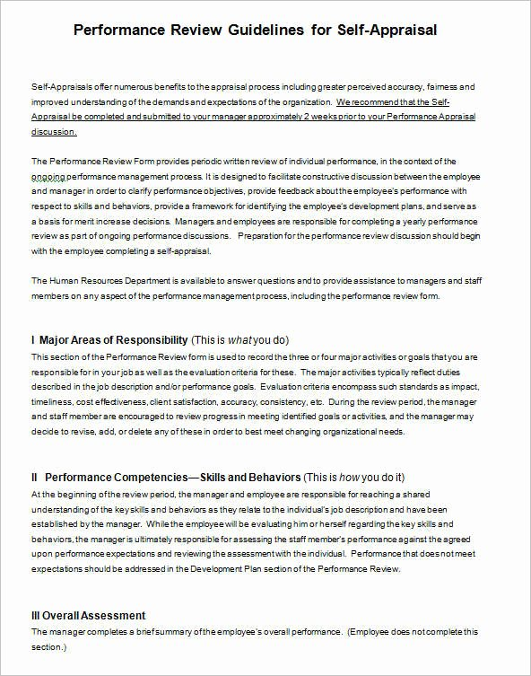 Performance Summary Example Best Of Performance Summary Examples F Resume