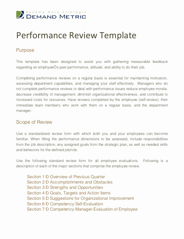Performance Summary Example Lovely Performance Review Template