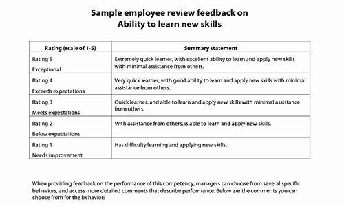 Performance Summary Example Luxury Sample Performance Review Ments & Appraisal Feedback