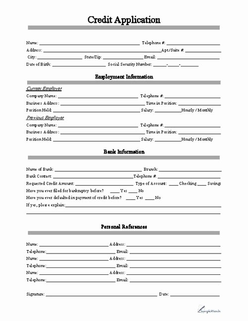 Personal Loan Application form Template Lovely Free Printable Credit Application form form Generic