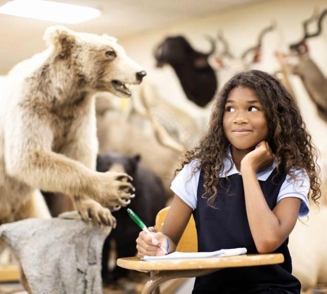 Persuasive Speech Outline Animal Adoption Elegant Best 25 Essay topics Ideas On Pinterest