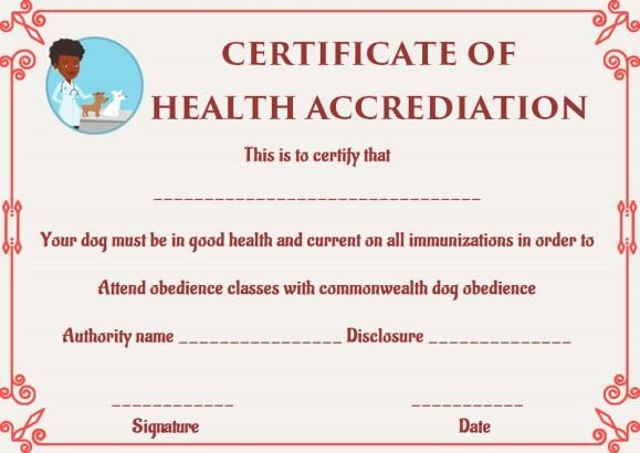Pet Health Certificate Template Awesome Dog Health Certificate for Travel Templates