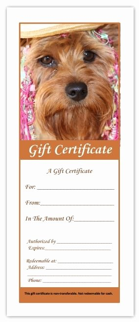 Pet Health Certificate Template Elegant Printable Pdf Pet Grooming Gift Certificates & Display