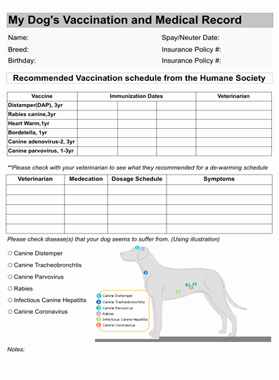 Pet Health Certificate Template Inspirational Dog Vaccination Record