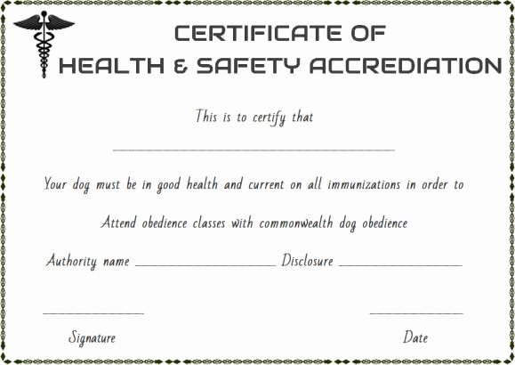 Pet Health Certificate Template Lovely Pet Health Certificate Template 9 Word Templates to