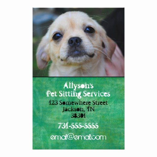 Pet Sitting Flyer Template Beautiful 86 Pet Sitting Flyers Pet Sitting Flyer Templates and