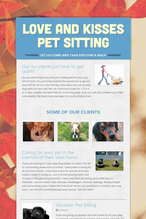 Pet Sitting Flyer Template Elegant 29 Best Images About Dog Walking On Pinterest