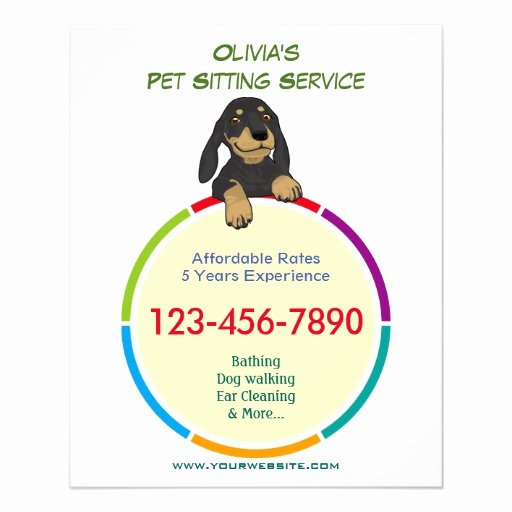 Pet Sitting Flyer Template Free Best Of Color Ring Pet Sitter Promotional Flyer