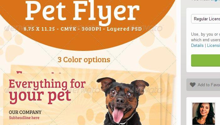 Pet Sitting Flyer Template Inspirational 5 Pet Sitting Flyer Templates