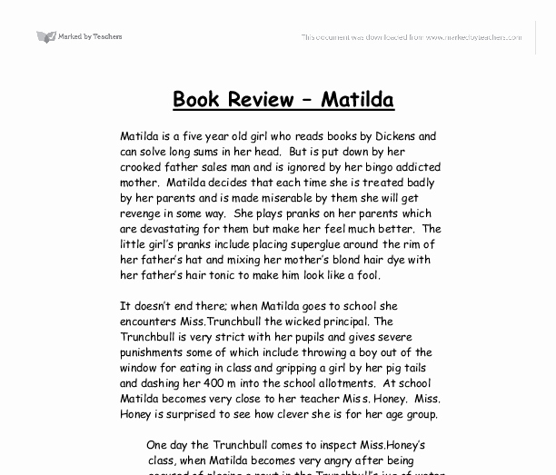 Picture Book Analysis Essay Best Of Book Reviews Examples Google Search