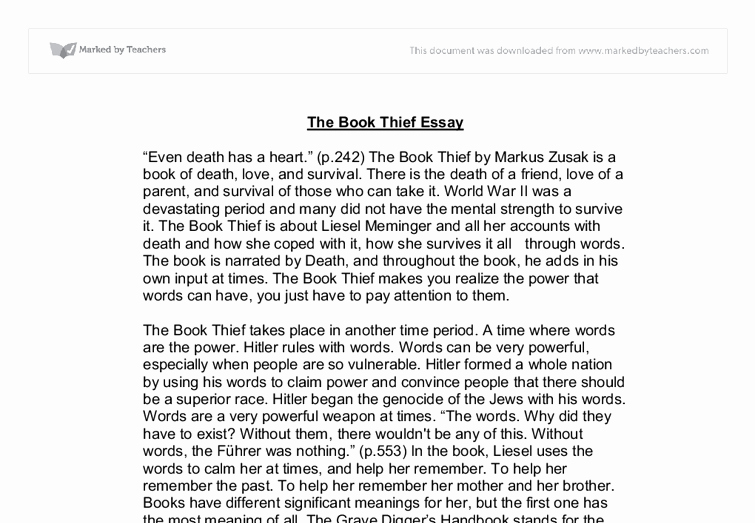 Picture Book Analysis Essay Luxury the Book Thief University Linguistics Classics and