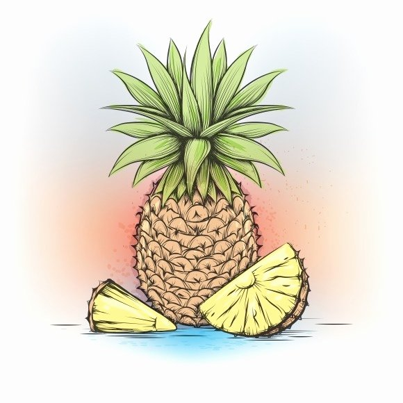 Pineapple Leaf Template Awesome Pineapple Leaf Template Designtube Creative Design Content