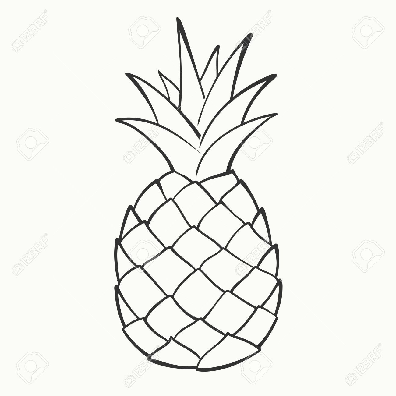 Pineapple Leaf Template Awesome Stock Vector In 2019 E S Room