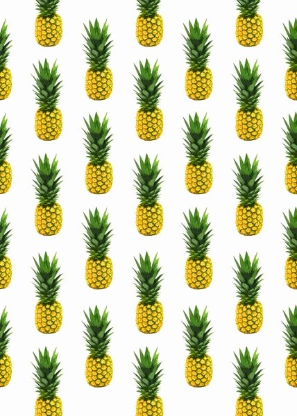 Pineapple Leaf Template Fresh 17 Best Ideas About Pineapple Pattern On Pinterest