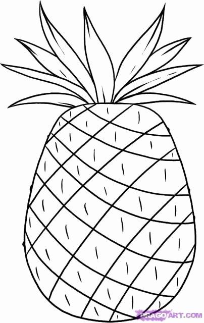 Pineapple Leaf Template Luxury المـكتبـة العلمية موسوعة الرسم والرسامين درس رسم