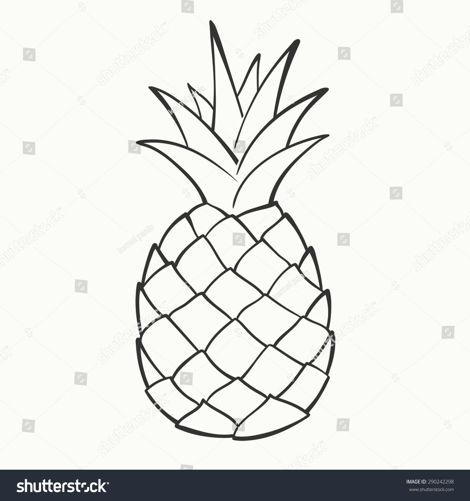 Pineapple Leaf Template New Outline Black White Image Pineapple Vector Stock Vector