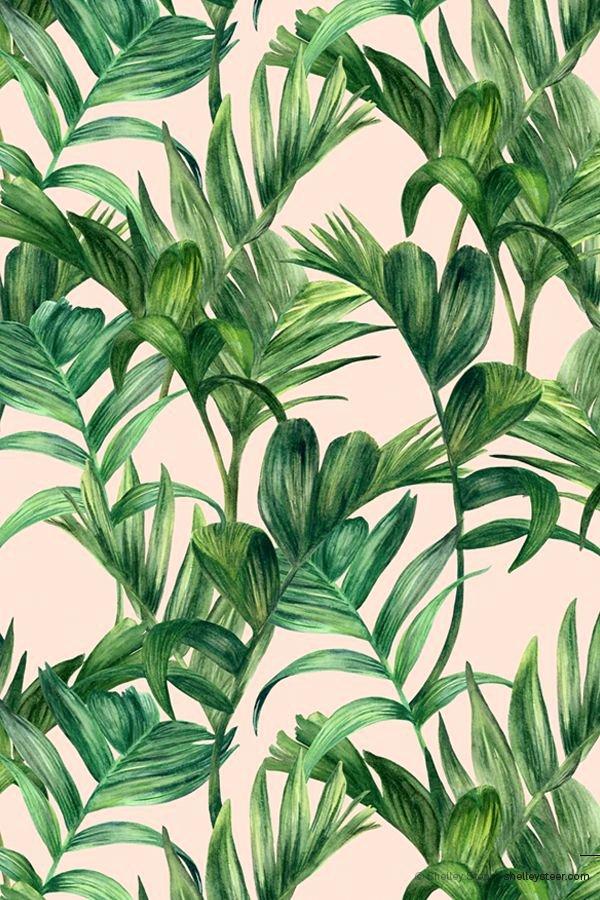 Pineapple Leaves Template Elegant 24 Best Tumblr Bilder Images On Pinterest