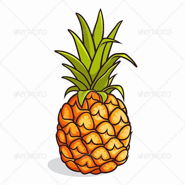 Pineapple Leaves Template Elegant Pineapple Leaf Template Tinkytyler Stock S