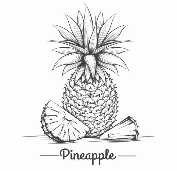 Pineapple Leaves Template Inspirational Pineapple Leaf Template Designtube Creative Design Content