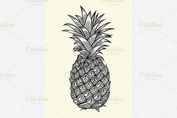 Pineapple Leaves Template Unique Pineapple Leaf Template Designtube Creative Design Content