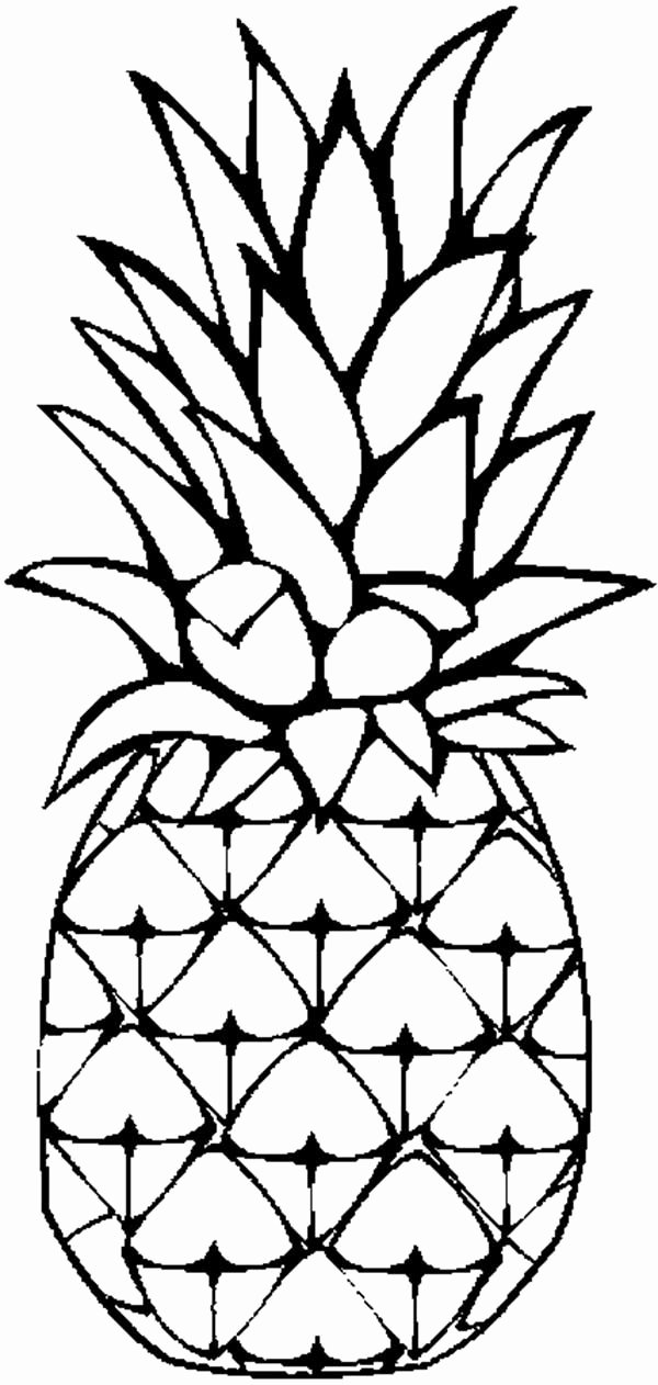 Pineapple Template Printable Beautiful Pineapple Coloring Page