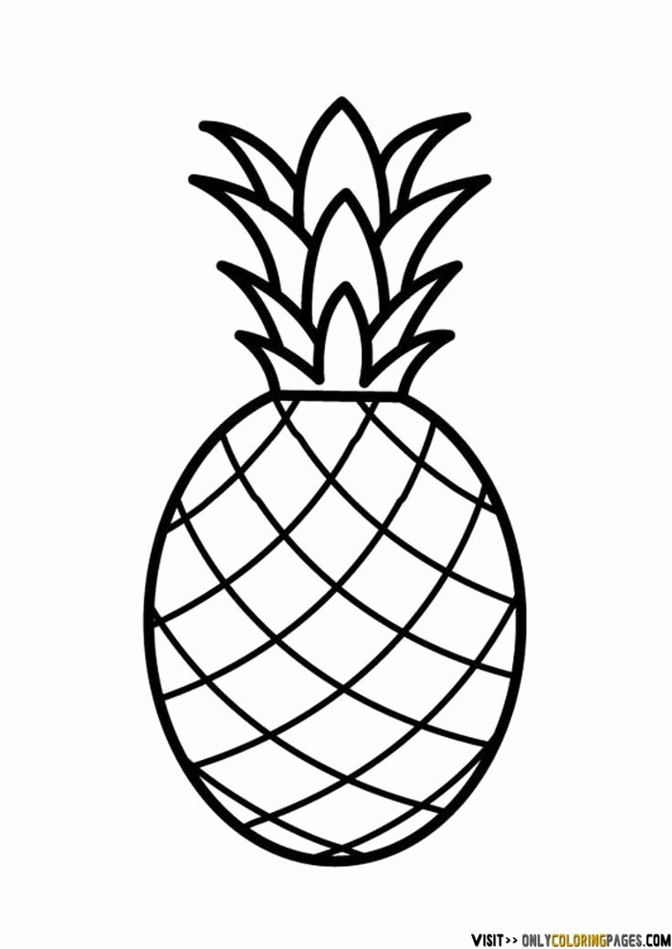 Pineapple Template Printable Fresh Best 25 Pineapple Drawing Ideas On Pinterest