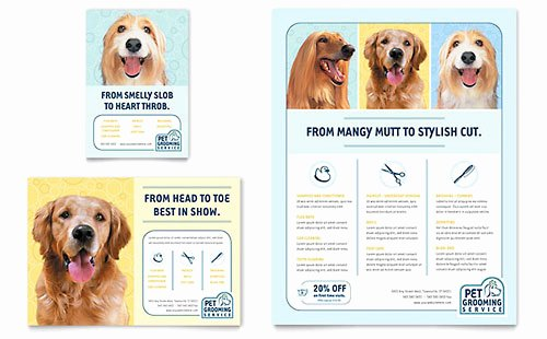 Playbill Template for Mac Lovely Pet Grooming Service Datasheet Template Design