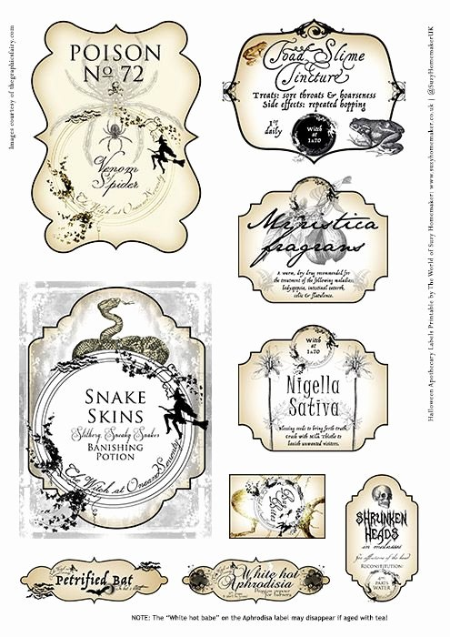 Potion Label Template Awesome Halloween Apothecary with 9 Free Potion Bottle Labels