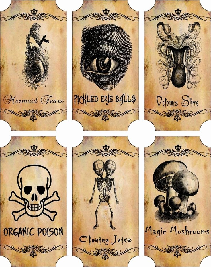 Potion Label Template Elegant Details About Vintage Inspired Halloween Sepia 6 Large