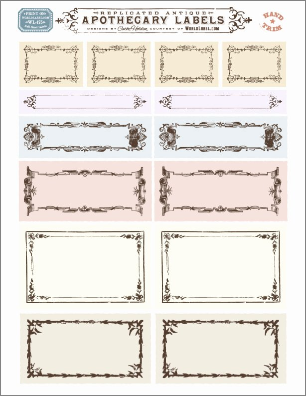 Potion Label Template Fresh ornate Apothecary Blank Labels by Cathe Holden