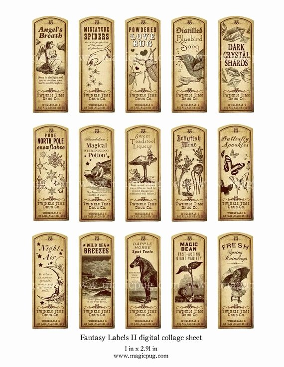Potion Label Template New Fantasy Magic Potion Labels Ii Digital Collage Sheet 15