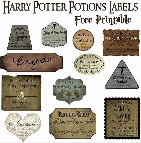 Potion Label Template Unique Make Your Own Potions Decor