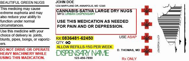 Prescription Bottle Label Template Unique Medical Marijuana Prescription by Timmysacc2 On Deviantart