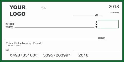 Presentation Checks Template New Big Check Giant Novelty Check Donation Check