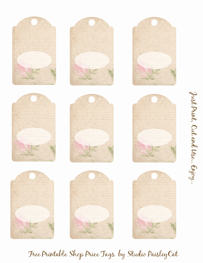 Price Tag Templates Printable Best Of Studio Paisleycat S Freebie Blog