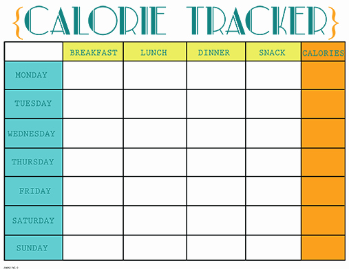 Printable Calorie Tracker Awesome Printable Calorie Tracker Chart