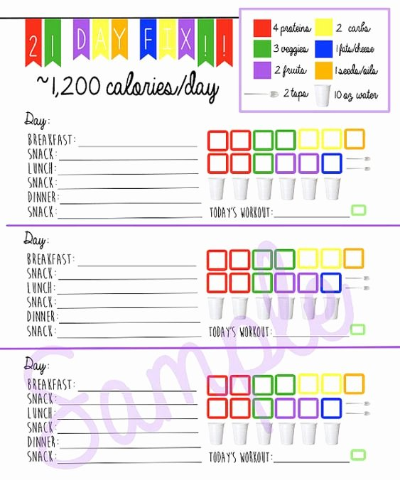Printable Calorie Tracker Inspirational 21 Day Fix Logging System Tracking Sheet Beach Body 1 200