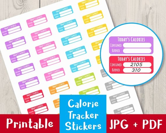 Printable Calorie Tracker Luxury Calorie Tracker Printable Planner Stickers Bullet Journal