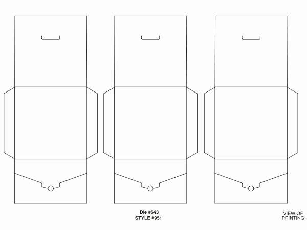 Printable Cd Envelope Template Best Of Cd Mailer Templates