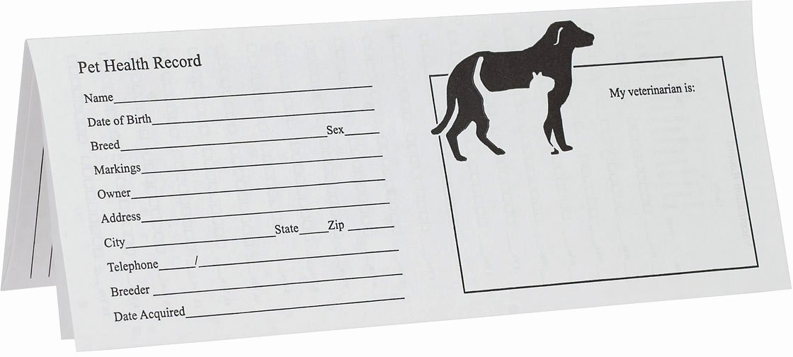 Printable Puppy Shot Record Awesome Pet Records for Dog and Cats Instruments