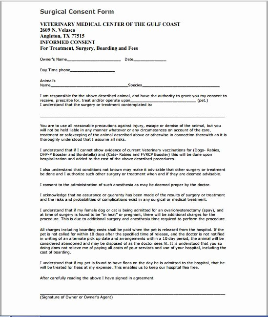 Procedure Consent form Unique Sample Medical Consent form