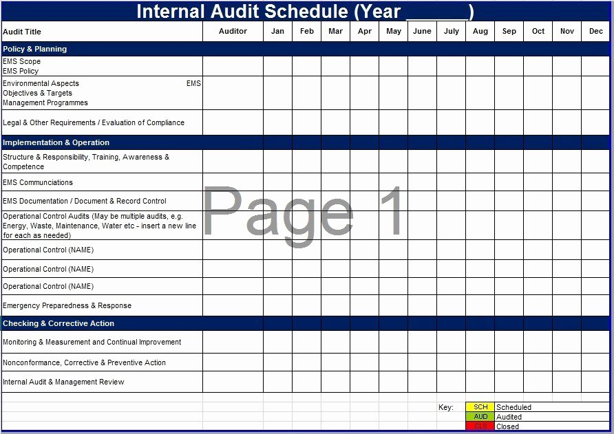 Process Audit Template Inspirational Schedule forms Printable