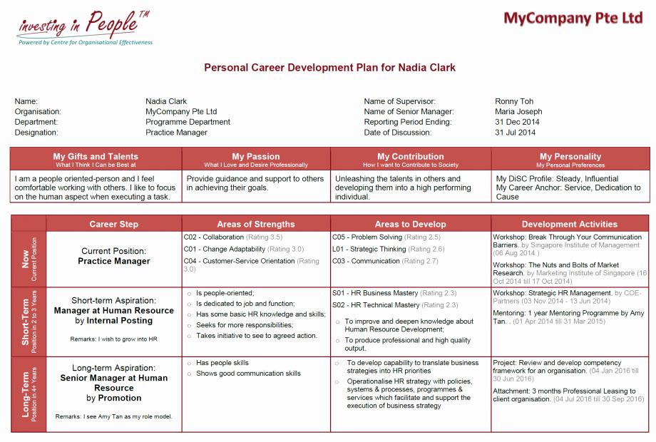 Professional Development Plan Sample Beautiful Talent Management Program Take Care Of Your Talent Coe